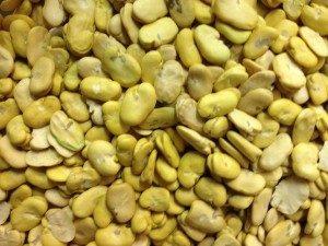 1 LB Peeled Split Fava Beans